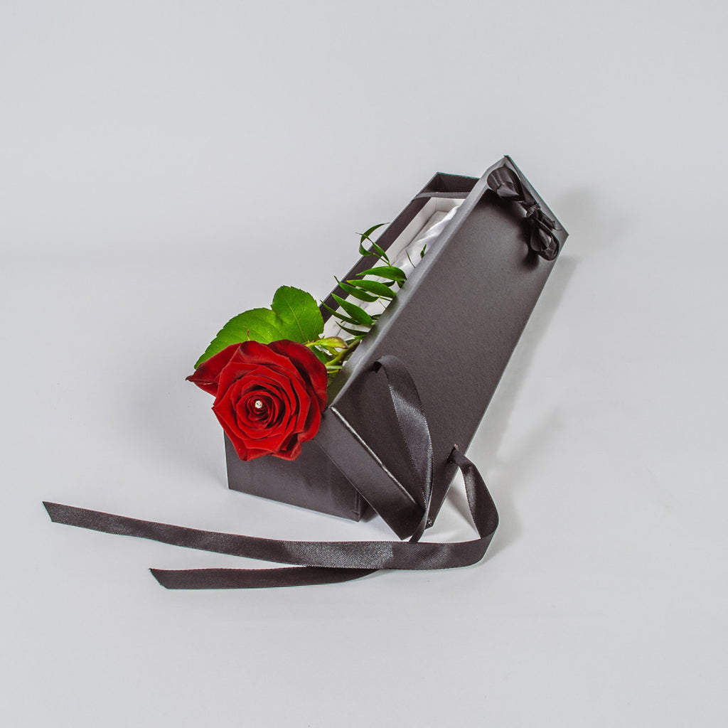 Single Red Rose - XOXO Florist Aberdeen
