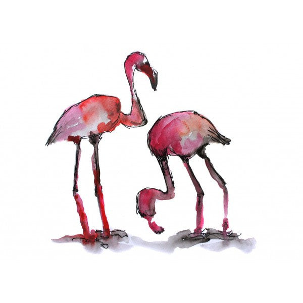 flamands rose elisa fair à l'aquarelle