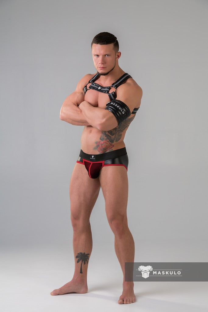 Youngero. Men's Fetish Briefs. Mesh Codpiece. Zippered Rear