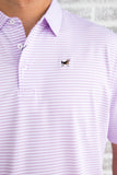 Southern Charm - Cove Stripe Performance Polo - Lavender/White