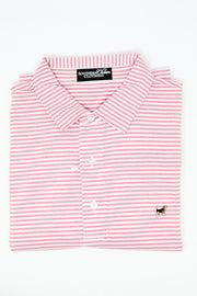 Southern Charm - Cove Stripe Performance Polo - White/Pink