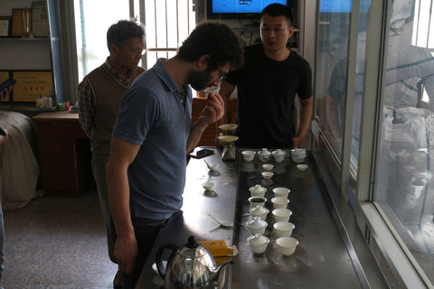 Professional tea tasting