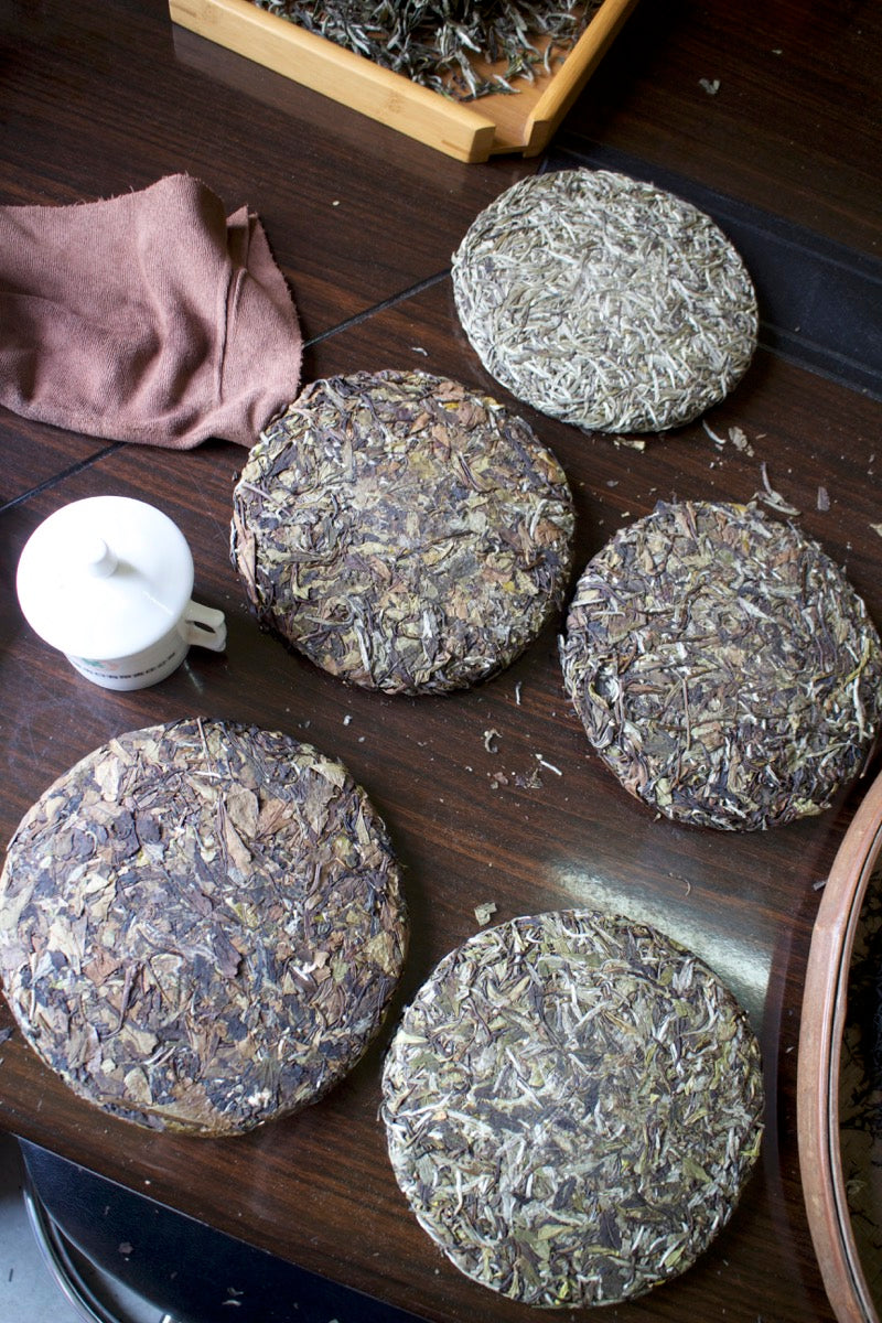 White tea cake from Fuding