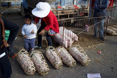 Pig at a market in Yunnan