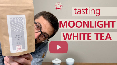 Tasting Moonlight White Tea