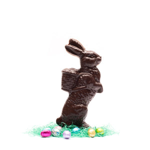 Chocolate Easter Rabbit 12 Ounce