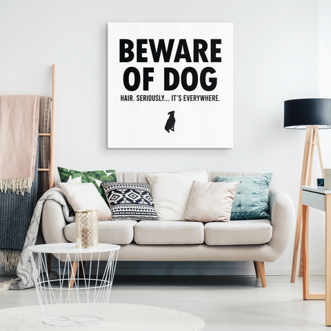 Beware Of Dog Hair Canvas Wall Art