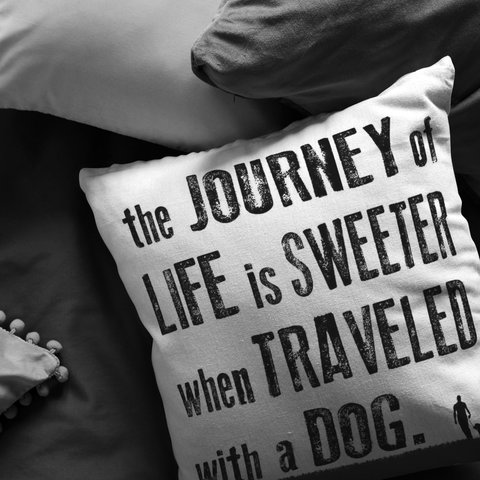 The Journey of Life Throw Pillow