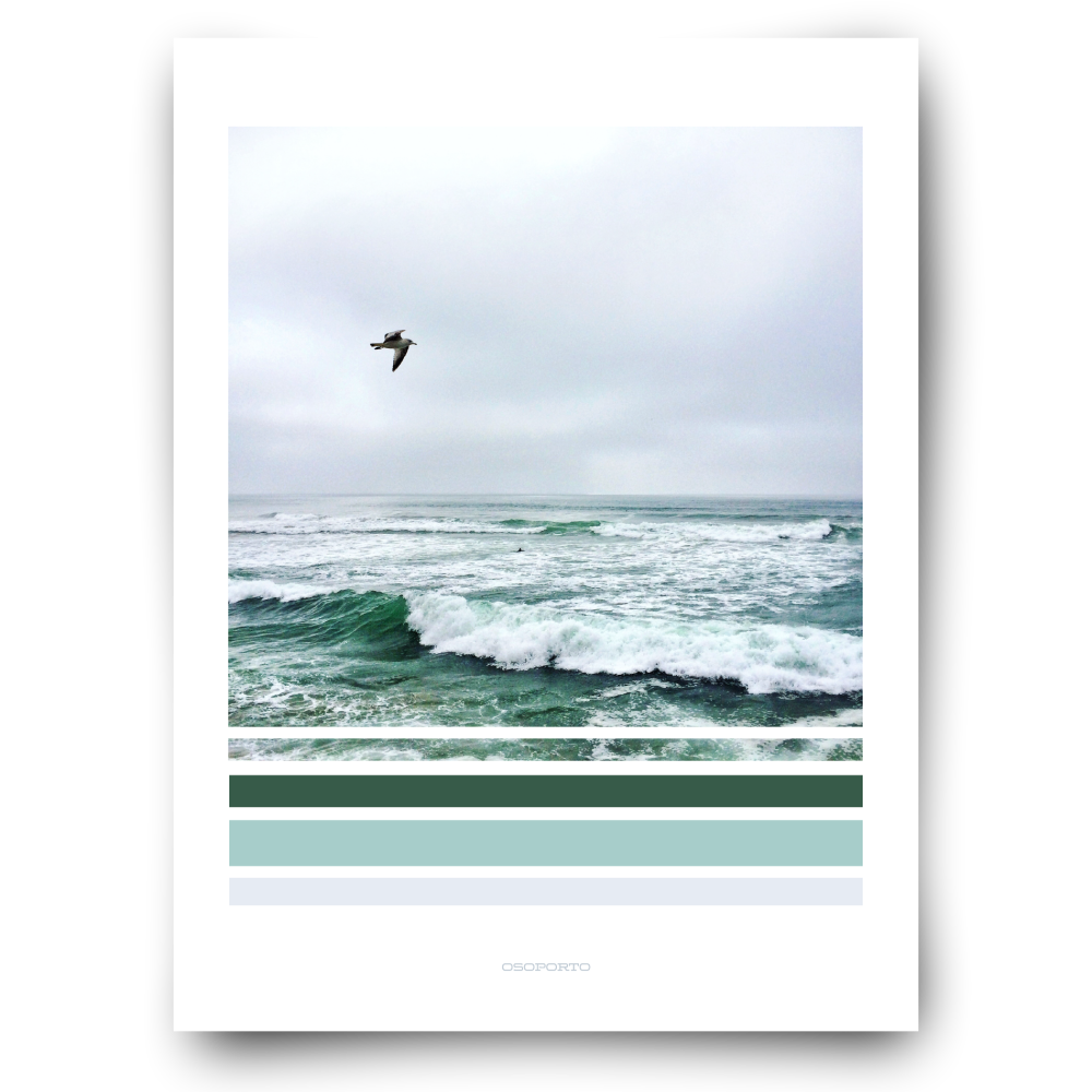 seagull with waves green graphic photography beach decor poster