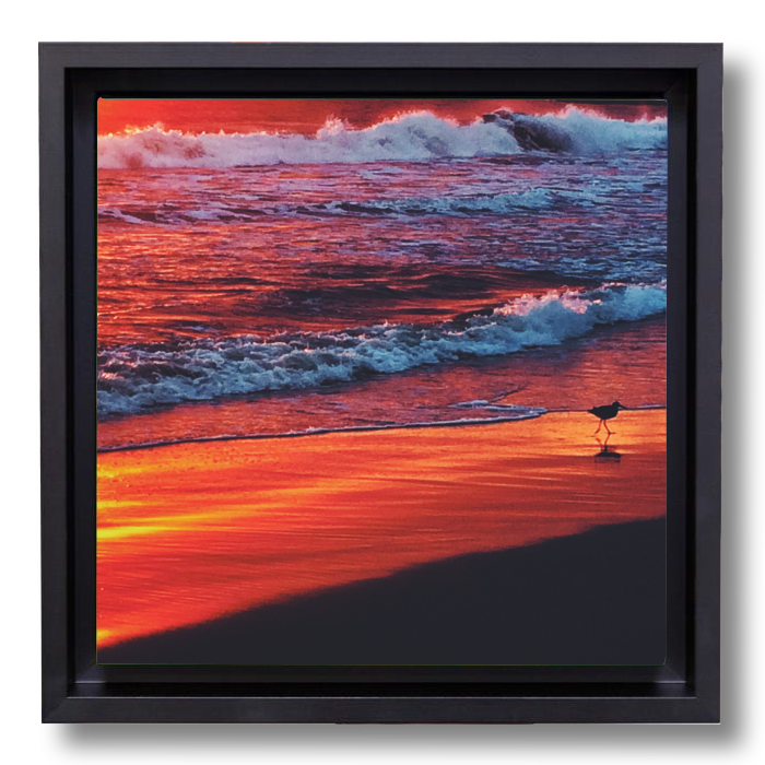 Beach decor photography canvas print: Edge of Sunset