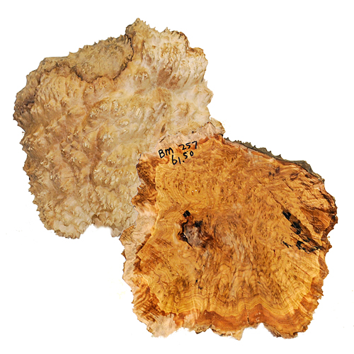 BROWN MALLEE BURL