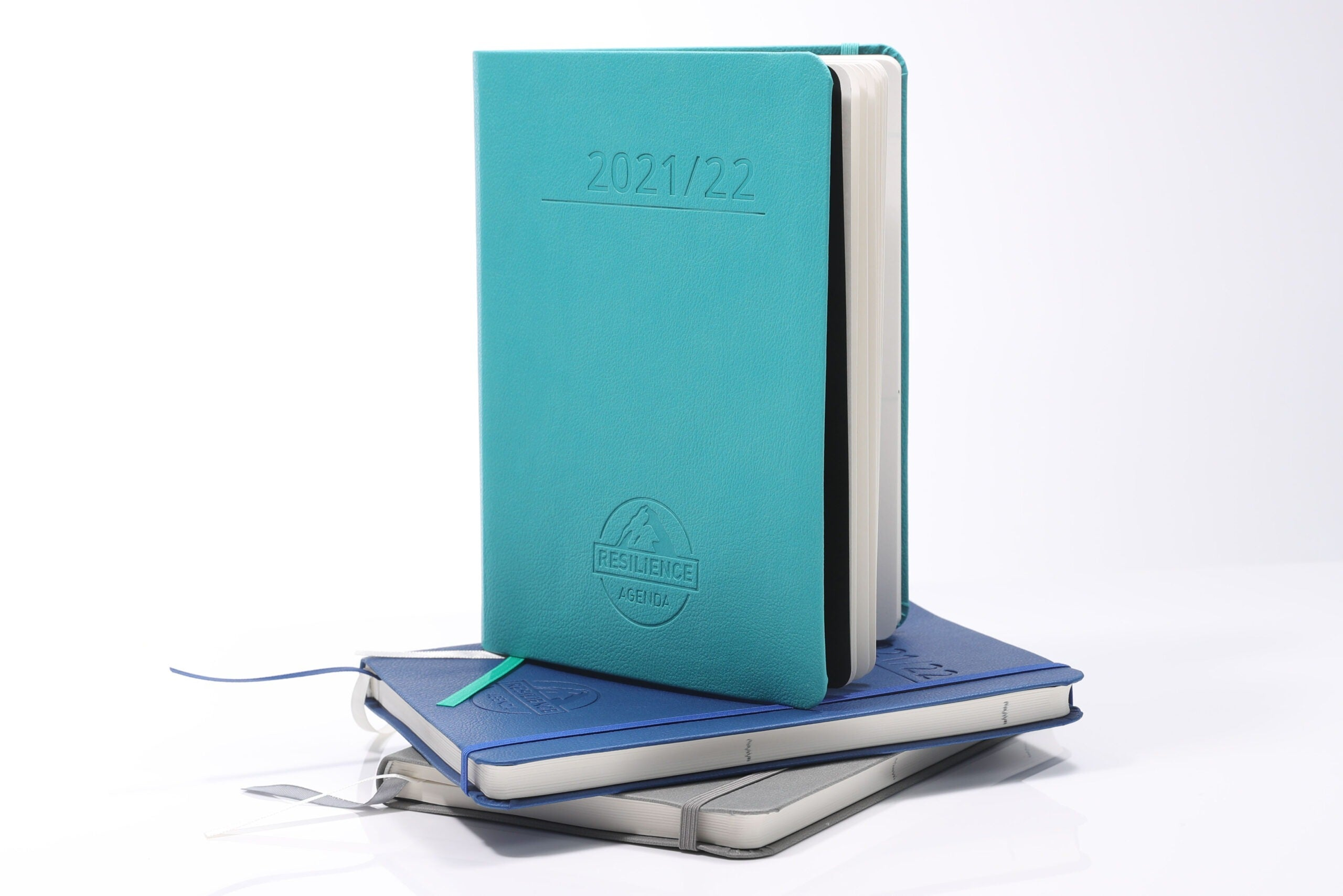 Teal Mental Fitness Diary