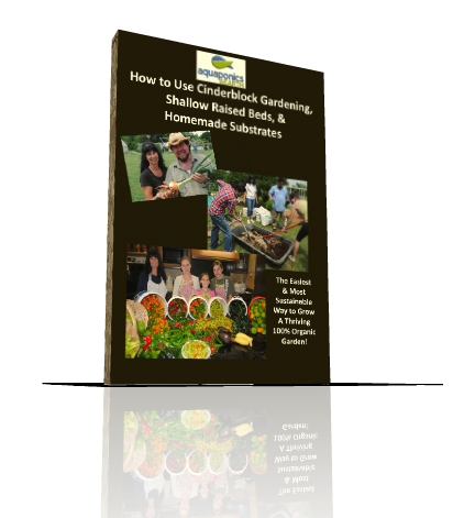 Cinderblock/Raised Bed Gardening - 3 DVD Training Set