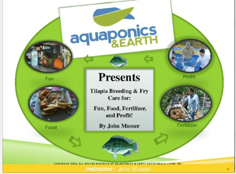 Tilapia Breeding, Fry Care & Grow-out for Food, Fertilizer and Profit - Digital Download