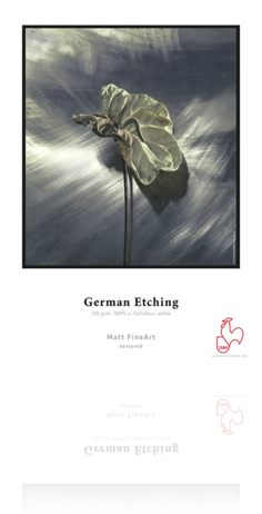 Hahnemuhle German Etching 310 gsm - Sheets