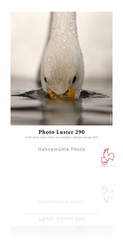 Hahnemühle Photo Luster 290 gsm - Sheets