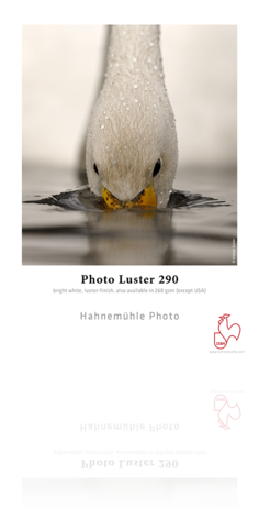 Hahnemühle Photo Luster 290 gsm - Roll