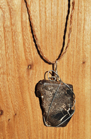 Wire Wrapped Petrified Wood Pendant