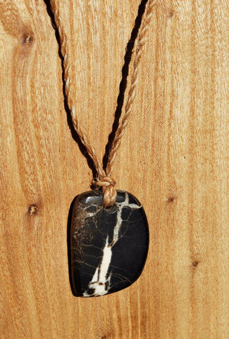 Petrified Wood Pendant On dogbane