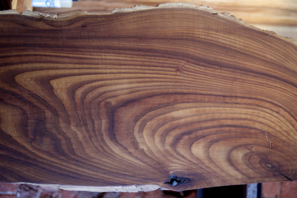 Russian Olive Slab