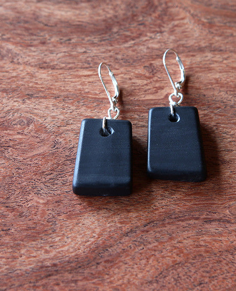 Black Wonderstone Earrings