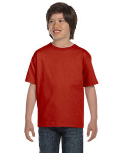 Blank Hanes Beefy-T