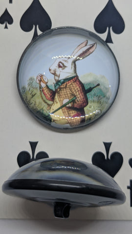Alice In Wonderland / White Rabbit / Acrylic Dome