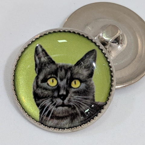 Cat / Green Background / Acrylic Dome