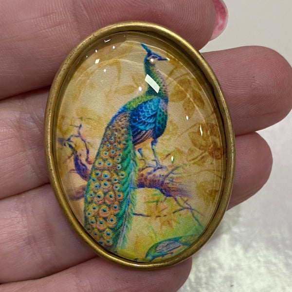 Oval Glass Domed / Peacock