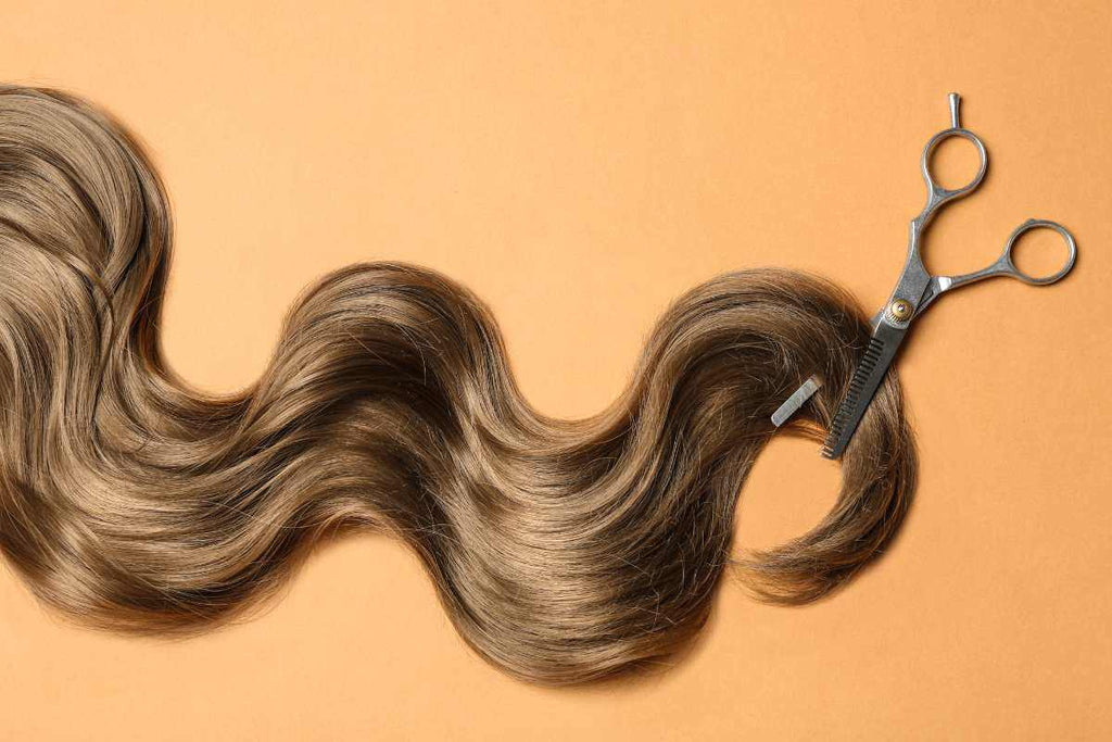 Thinning and texturizing shears over salon hair