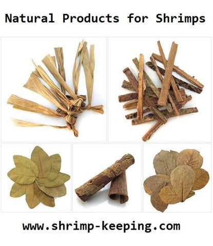 Natural Products Shrimps