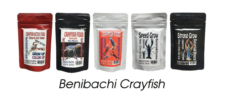 https://shrimp-keeping.com/collections/benibachi-crayfish