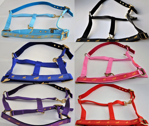 PADDED NYLON WEBBING HEADCOLLAR - Gold Horse Design - 5 Bright Colours-All Sizes