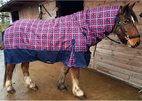 Sheldon 250g MW to HW Combo turnout rug-The Ragnar Collection