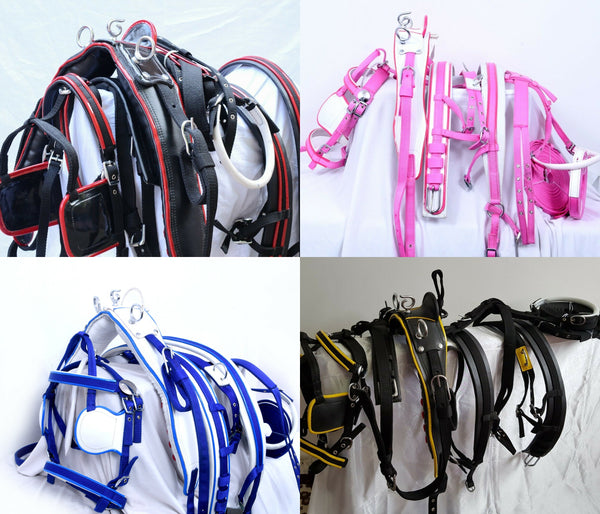 The Ragnar Collection Superior Driving Harness-5 Colour