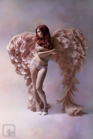 Perfectly Blush Angel Wings