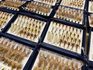 Allegheny Native Dry / Dropper Fly Box (65 Flies @ approximately 1.32/fly)