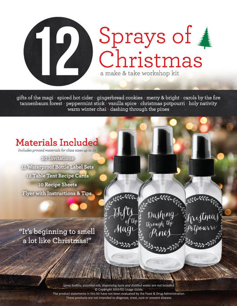 12 Sprays of Christmas Make & Take Workshop Kit and DIY Products