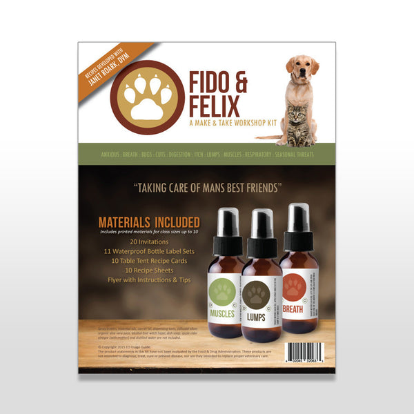 Fido & Felix Make & Take Workshop Kit