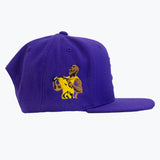 HOT ROD ESSENTIAL SIGNATURE LA TRIBUTE SNAPBACK (PURPLE/GOLD)