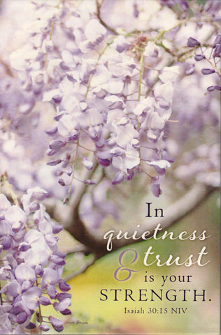 Branch Bathed in Light - Quietness and Trust YesterBoard Prayer Journal  - St. Patrick's Gift Shop & Bookstore