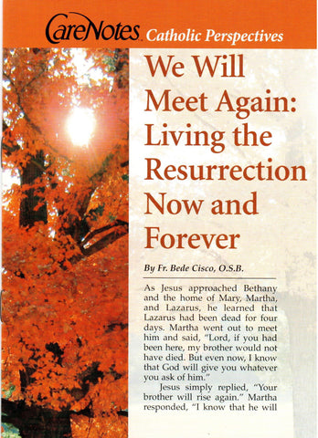 We Will Meet Again: Living the Resurrection Now and Forever  - St. Patrick's Gift Shop & Bookstore