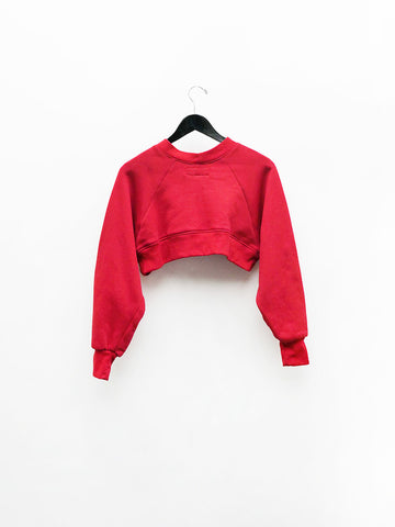 Alexa Stark Modest Rose Crop Sweater