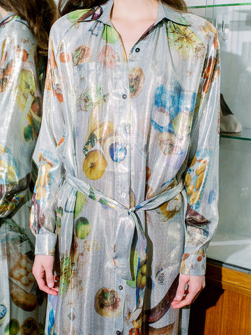 Anntian Shirt Dress, Silver Food