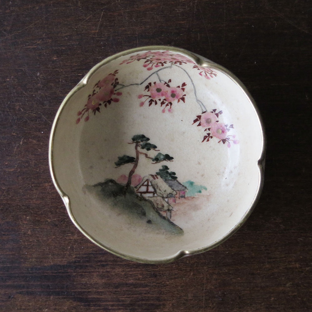 chinese hand-painted bowl