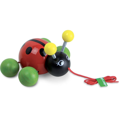 Baby Lady Bug Pull Toy