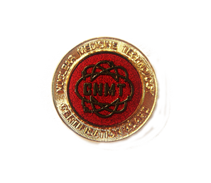 NMTCB Lapel Pin - CNMT Certificants