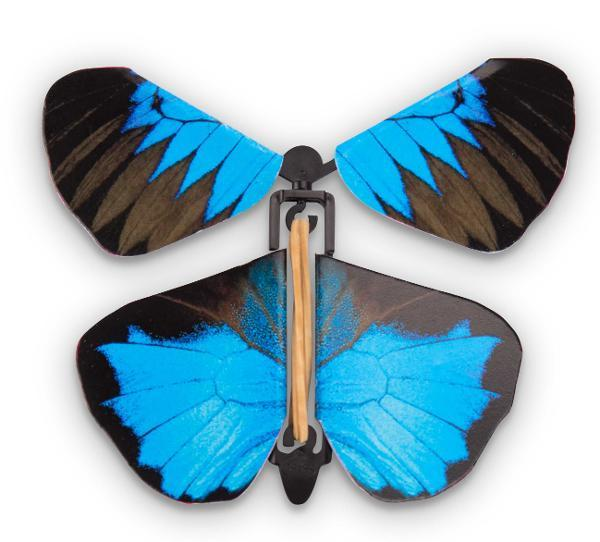 Wind Up Australian Butterflies