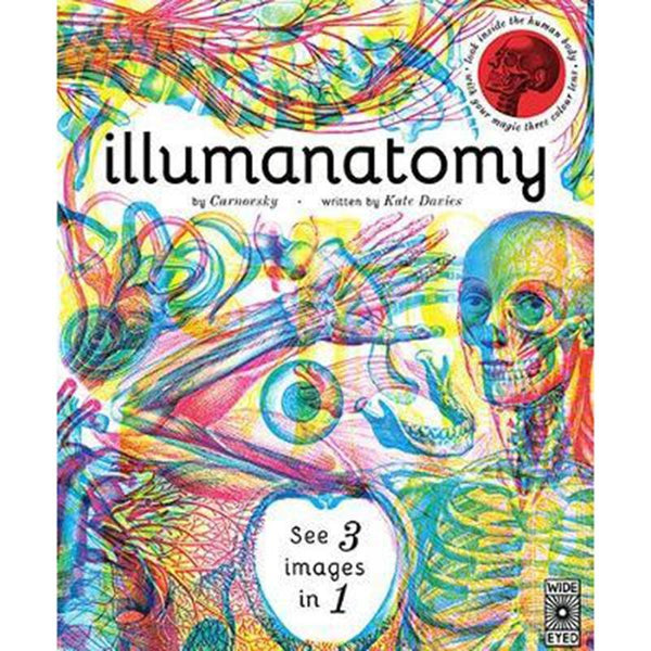 Illumanatomy a great book on the human Anatomy