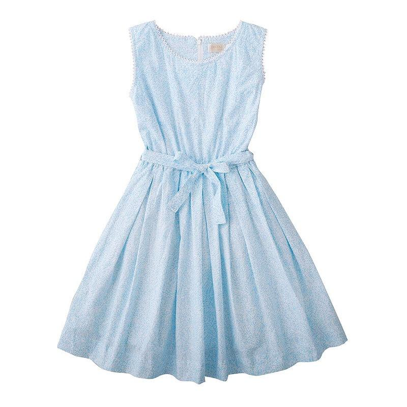 Peggy Blaze Dress - Blue Vine at Shorties